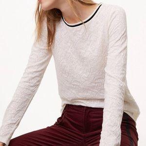NWT ANN TAYLOR LOFT velvet trim lace jacquard top
